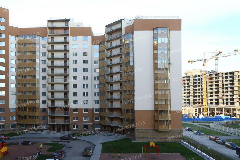 В приморском районе петербурга появилось самое большое в россии граффити